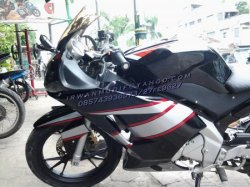 Full Fairing model ducaty